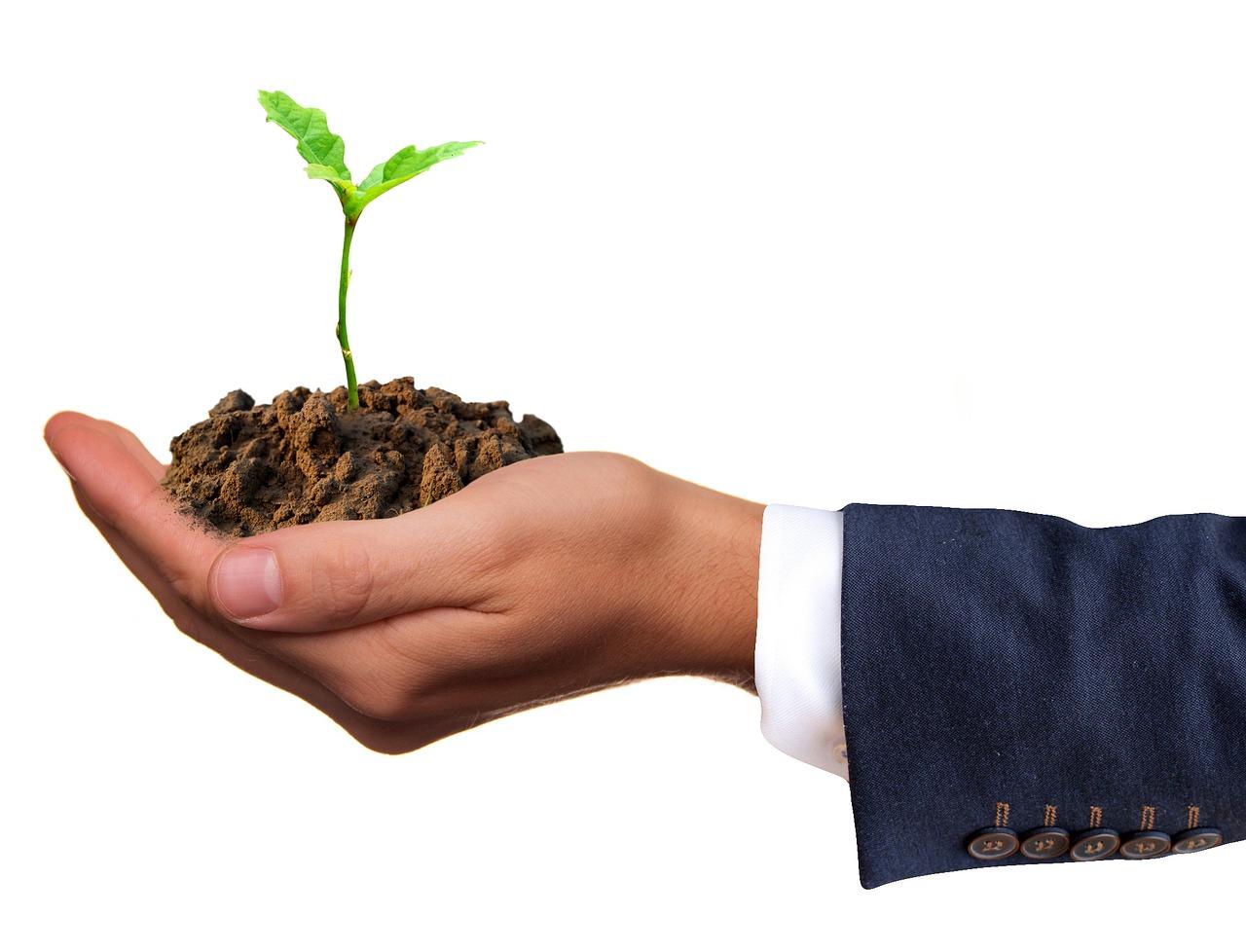 Бесплатная приватизация земли продлена до 2018 года