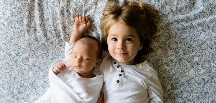 Изображение - Закон об элементах на ребенка 2019 brothers-457237_1280-702x336